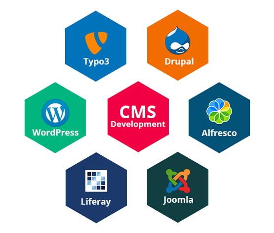 CMS Web Development Services Delhi