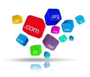 Domain Registration In Delhi